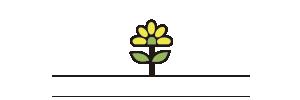 Segredo da Planta